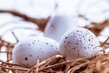 Easter / Easter, celebration, Christian holiday, photography