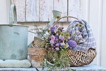 Garden / Ideas for a beautiful, secret garden, full of flowers and little creatures.