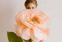 Props for Photography / Beautiful ideas for props for portrait photography