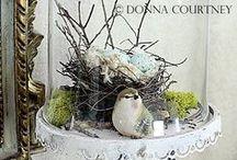 Bird, Nest, Feather, Egg / Birdy inspiration