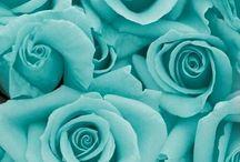 Blue, aqua, turqoise