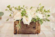/// beautiful blooms