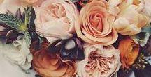 HOCHZEIT | Herbst & Autumn / Klar, jeder möchte gerne im Sommer heiraten, wenn es so richtig schön warm ist - aber schaut euch bitte diese Inspirationen für eine Herbst Hochzeit an? Die warmen Farben, die kuschlige Atmosphäre und die vielen Lichter sind super romantisch! Eine Autumn Wedding ist also auch etwas ganz besonderes...