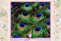 Pawie pióra
