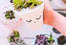 diy craft / Fun DIY craft ideas!