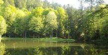Pour un séjour en pleine nature / Découvres les paysages de la vallée de Rahin et Chérimont, une invitation à la détente...