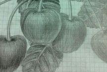 Portfolio - Desenho