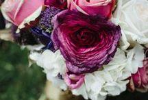 FLOWERS // FLEURS ♥ / by Fraise & Basilic