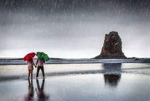 Here Comes More Rain Again / by Anne Shepherd