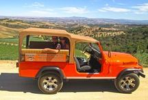 Paso Robles Wine Tours / Paso Robles wine tasting and wine tours. Paso Robles is a a major player in the California wine industry.  Visit Paso Robles and enjoy great wine and great people!
