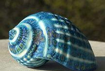 κοχυλια--shells
