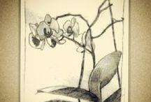 Szkic z natury
