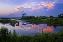 DISCOVER LOUISIANA / Discovering the beauty and best of Louisiana.