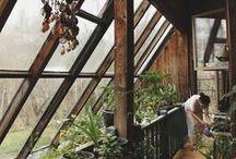 Terasa a zimní zahrada