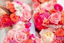 Wedding Idea's for Jacqui / Wedding Images