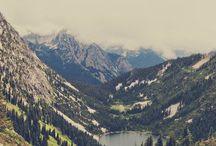 Montanharia / Pixel de relva orvalho e blur