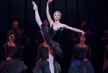 Daria Klimentova / Ballerina profile 6 || Daria Klimentova