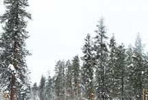 decemberrr / winter