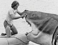 Jaws / Çünkü en korktuğum film sorusunun daimi cevabı  çocukluk yüzme travması
