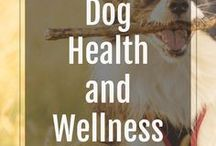 Dog Health And Wellness / All about the health and happiness of our fur babies! | DogJointPain | DogArthritisRelief | jointpainindogs |