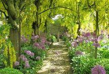 esterni e giardini
