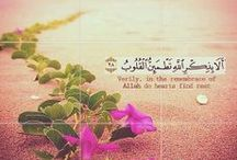 Collection of Quran Verses