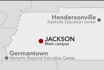 In Memphis | Nashville / Union University Germantown, The Stephen Olford Center, Union University Hendersonville / by Union University