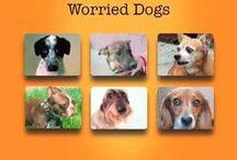Resources: Training &Behavior  / Dog Resources and Info - Training Behavior