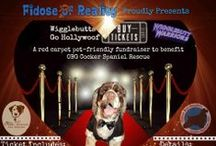 Events & Fundraisers OBG Cocker Rescue / Adoption Shows, Auctions, Fundraisers, Walks, Winetastings and lots more events for supporters, fosters, alumni and friends!