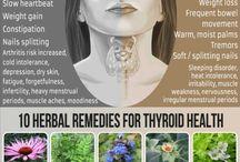 Hashimotos thyroidism