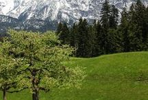 Spring in Switzerland / springtime walks and other outings for kids in Switzerland