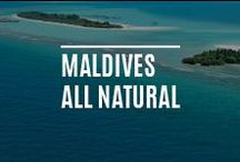 Maldives | Always Natural / The Maldives has stunning white sandy beaches, not least those at Kanuhura Resort & Spa, for you to experience sheer luxury- these beaches are the epitome of what a beach should look like. / by Sun Resorts