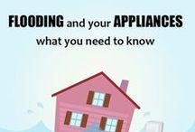 Appliances / New appliances, designs, models
