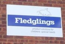 Fledglings News / Fledglings finds and sells products that aims to improve the lives of disabled children and their families. http://www.fledglings.org.uk