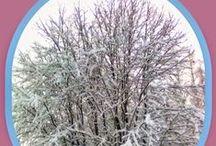 Winter 2015 / My Wintery Moods