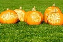 ✿ Pumkin decor ✿ / Græskar udskæringer til halloween ✿ Pumkin carving for halloween.