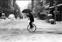Jednokolka / Unicycle