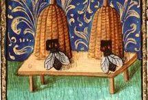 Manuscritos Iluminados y Miniaturas