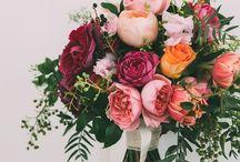 Happily Ever Weeks / by Hannah Grace Jones