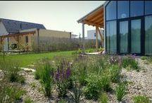 Garden design / Garden, architecture, landscape,...