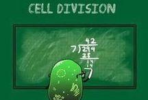 Funny biology