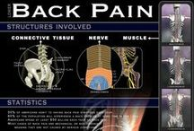 Back Pain & Support