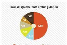 Tarım Infografikleri/Infographics / tarlasera her sayısında Türkiye ve dünyadan tarım meselelerini rakamlara indirgiyor, ınfografiklerle tarımı anlaşılabilir ve eğlenceli hale getiriyor.
