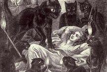 Image III: Illustrated