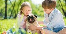 Amici Animali / Improntaunika.it, canale tematico interamente dedicato al mondo degli animali