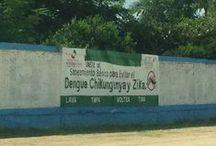 Paredes contra el Dengue / Fotos de paredes contra dengue
