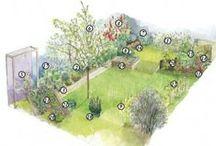 plan de jardin / plan de jardin