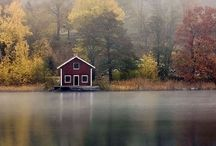 Autumn Colours / by Rusty