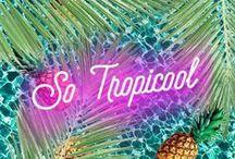 SO TROPICOOL / Sortez les bikinis, le bronzage impeccable et les vernis fluo pour les filles!   La chemise hawaienne, les abdo tout chauds et les  ukulélés pour les garçons!