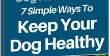 Dog Health Care: 7 Simple Ways To Keep Your Dog Healthy by Rachele Baker, DVM / In this book, Dr. Rachele Baker shares the knowledge that she has acquired during more than sixteen years as a practicing veterinarian. Even people who have had dogs for years will be sure to learn something new in this book.